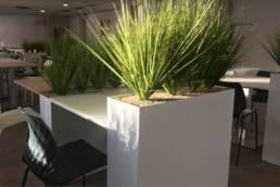 Aménagement plantes en interieur - Mot de Passe Mobilier